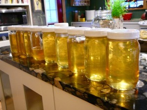 honey harvest from 6 FlowHive frames
